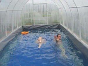 Как сделать крытый бассейн на даче своими руками + Фото: Пошагово, размеры - Обзор + Видео