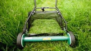 Создаем механическую газонокосилку своими руками в домашних условиях? Пошаговый обзор