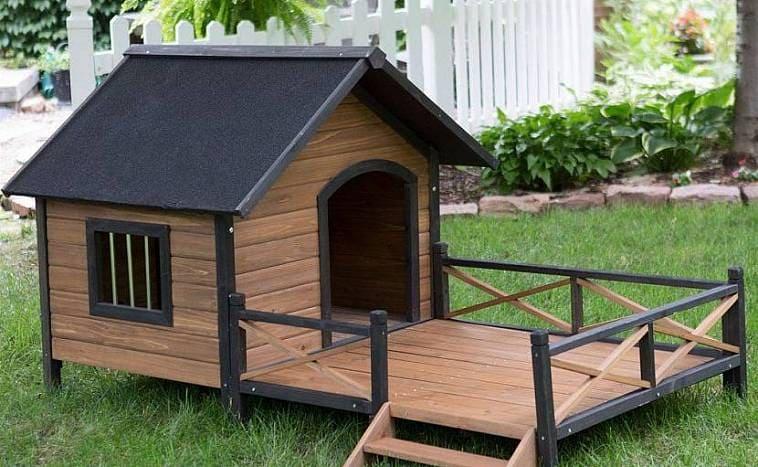Будка для собаки: размеры и утепление