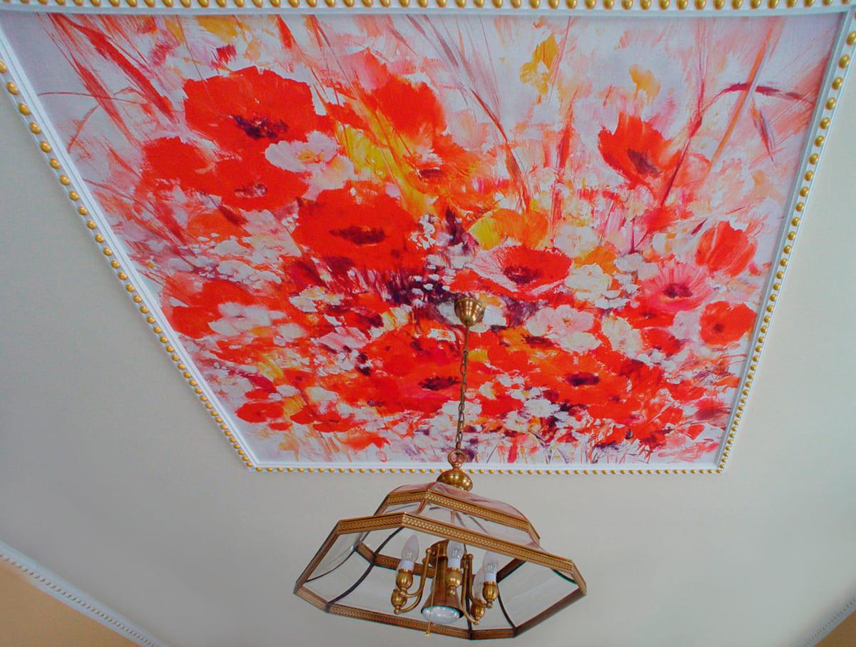 Натяжные потолки - разновидности, фото, цены, особенности 19
