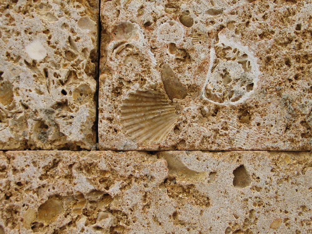 Камины - виды и их особенности 073