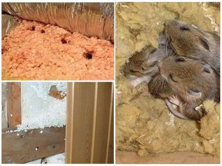 Каркасные дома - виды, плюсы и минусы каркасных домов 16