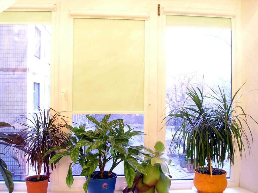 Рулонные шторы - плюсы и минусы установки, выбор материалов 084