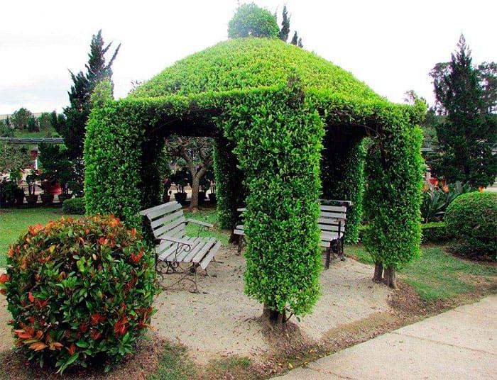 Виды дачных беседок - идеи простых садовых, открытых и закрытых вариантов 013